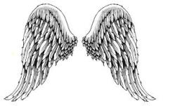 angel_wings