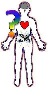 head heart gut full body